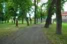 Trasa 3 - Wschowa - Konradowo - Stare Drzewce - Łysiny - Wschowa